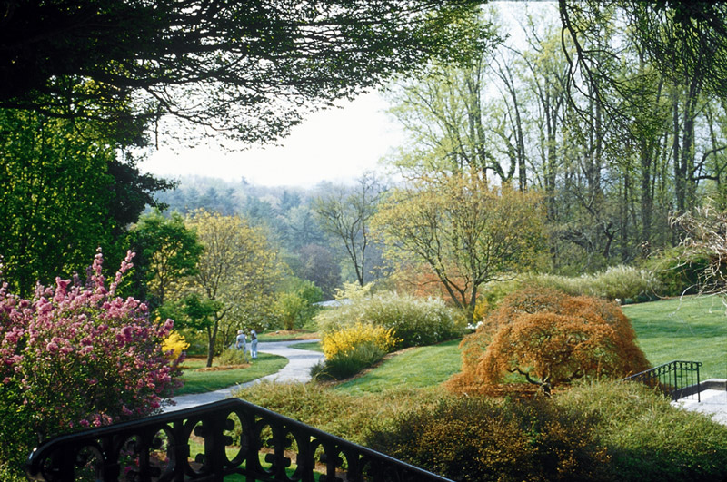 Biltmore Estate Landscape