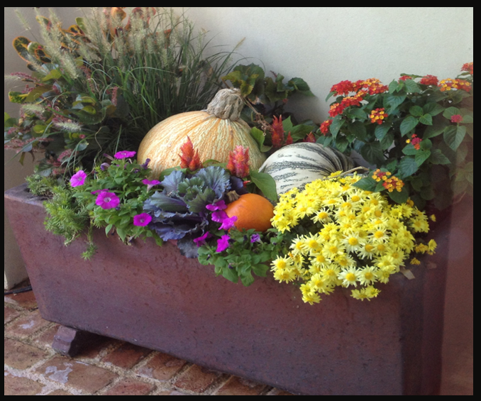 Photograph of fall front porch decor with pumpkins