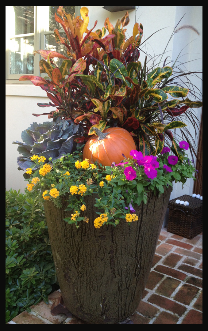 Photo of Beautiful fall themed porch decoration with flowers and pumpkin