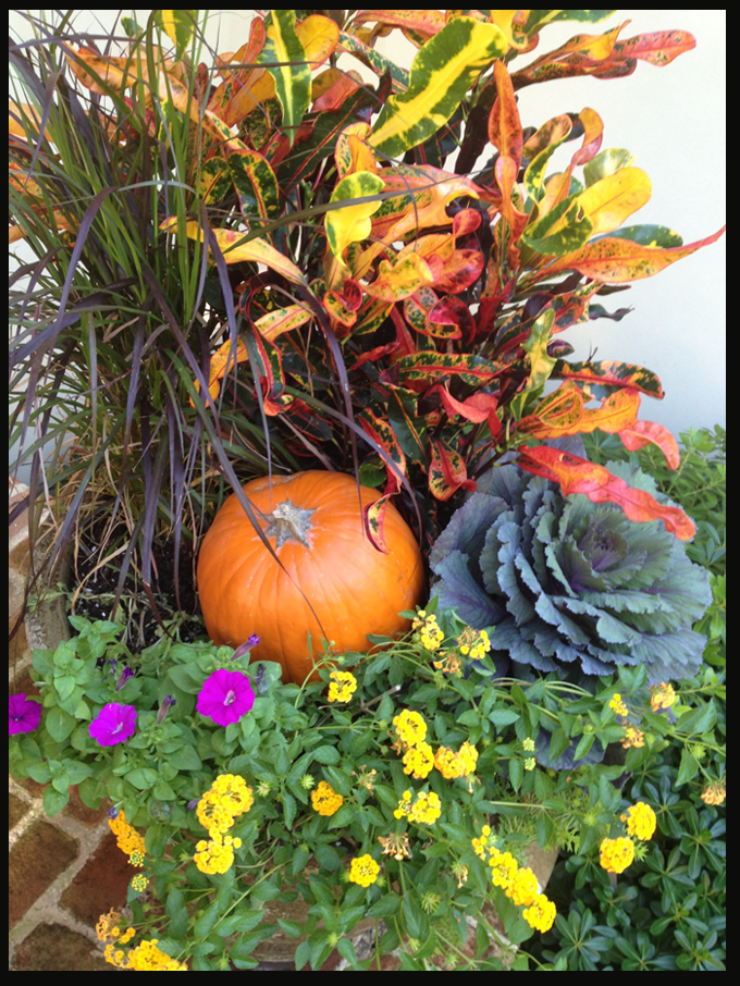 Lovely photo of front porch fall decor