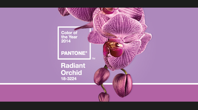 radiant-orchid-wedding-color-of-the-year