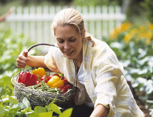 FAMILY FARMING (3)