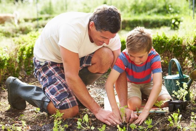 FAMILY FARMING (4)