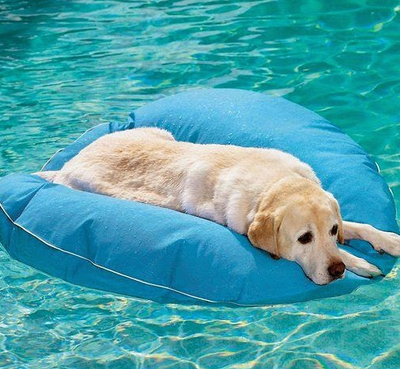 OUR PICK OF SUMMER's BEST POOL FLOATS