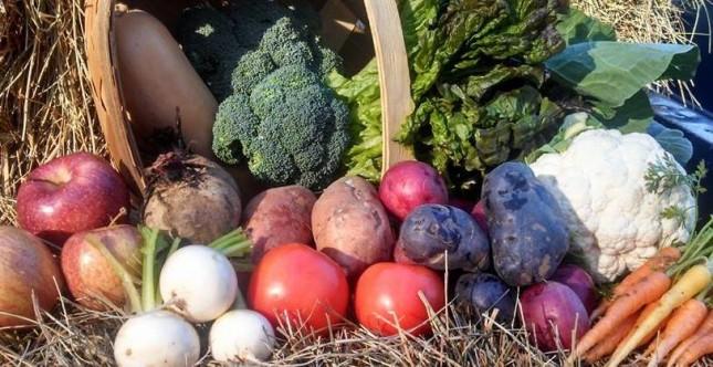 fresh_harvest_box