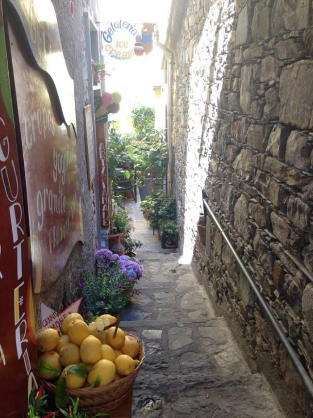 Cinque terre Gelatona alley