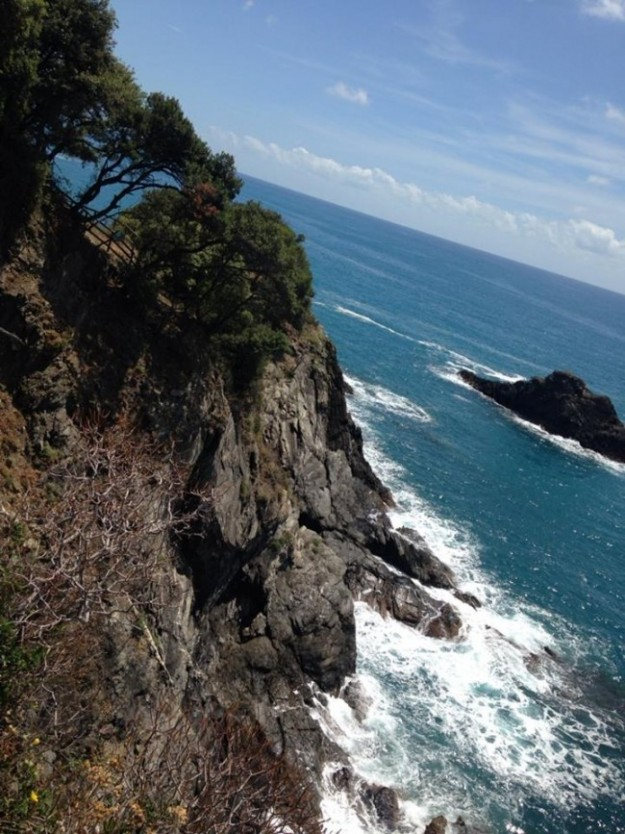 Rocky Coast cliff