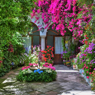 The Garden Patios of Cordoba, Spain: Enjoy A Virtual Vacation!