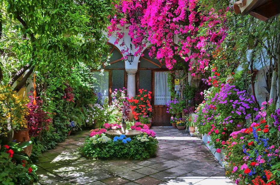 The garden patios of cordoba spain a virtual vacation for Garden design ideas in spain