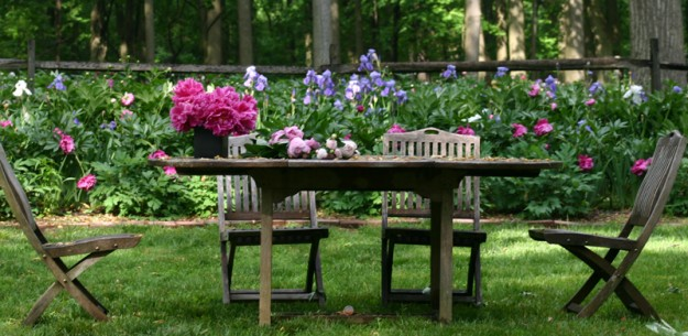 peony with picnic table