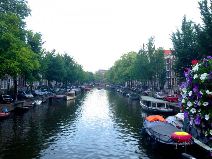 Amsterdamcanalflowers