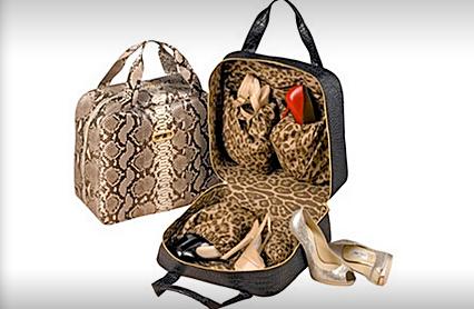 Leslie Carothers briefcase