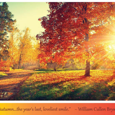 On Being Grateful for Fall's Blessings