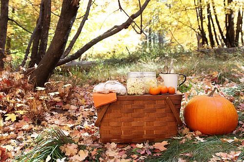 autumnpicnic