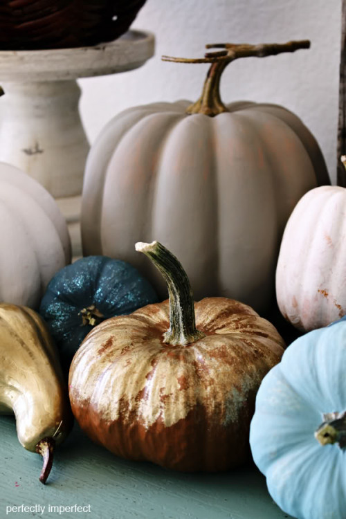 painted pumpkins photo