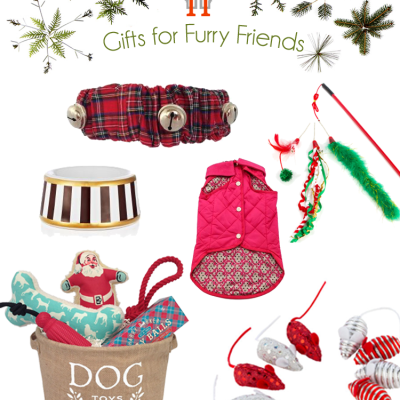 Top Picks for Christmas Gifts for Your Special Furry Friends