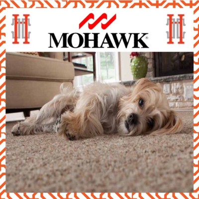 Mohawk Carpet's Magical SmartStrand – No More Worrying About Spills!