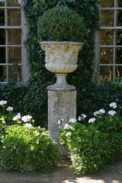 BOXWOOD and URNS IN THE GARDEN FOR SPRING - Hadley Court blog
