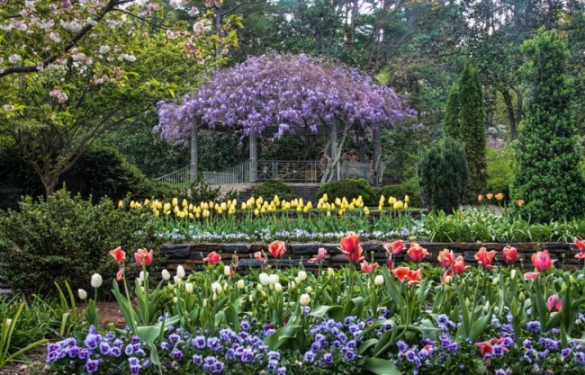 Spring Gardens Extraordinary Beautiful Blossoming Spring Gardens Decorating Inspiration