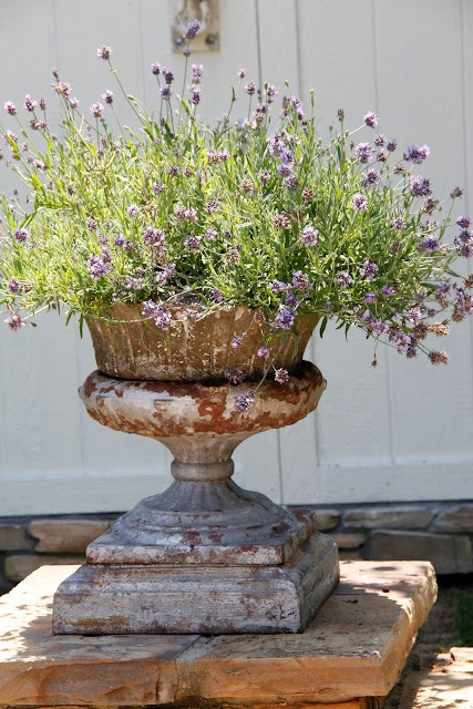 FLOWERING URNS IN DECOR FOR SPRING - Hadley Court blog (10)