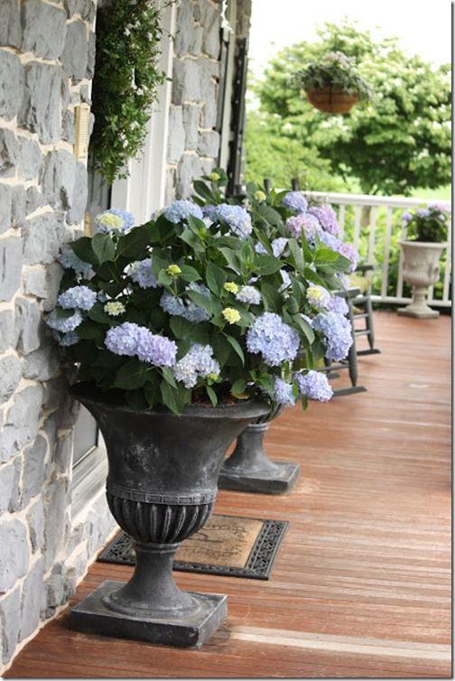 FLOWERING URNS IN DECOR FOR SPRING   Hadley Court Blog (11)