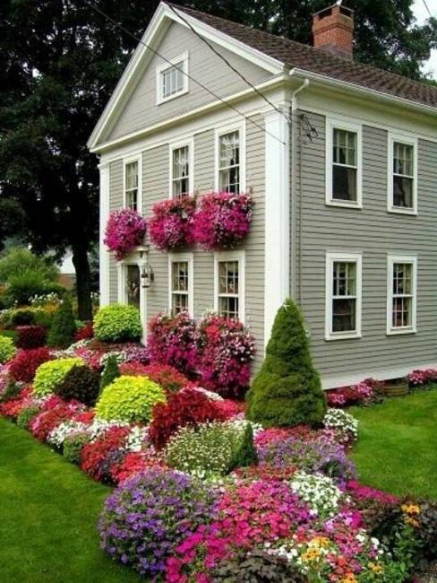 Summer flower boxes to add a splash of color to your home photograph