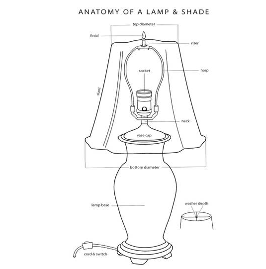 Anatomy of a table lamp and parts || Hadley Court