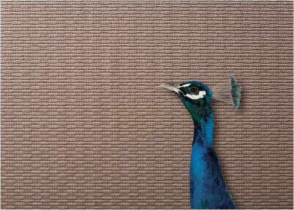 Crypton Fabrics || hadleycourt.com