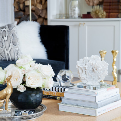 Our Top 5 Tips For Styling Your Bookcases