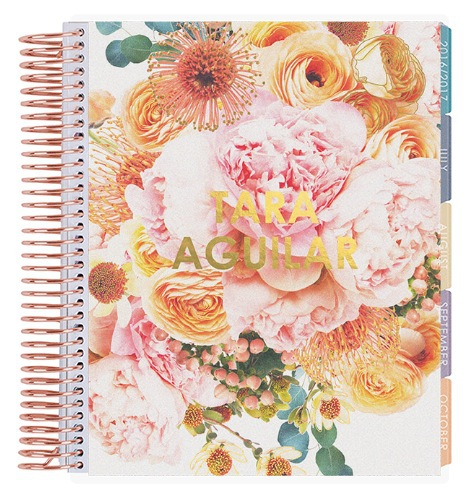 erin condren customized LIFEPLANNER organizing