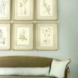 The Art of French Matting With Antique Botanical Prints