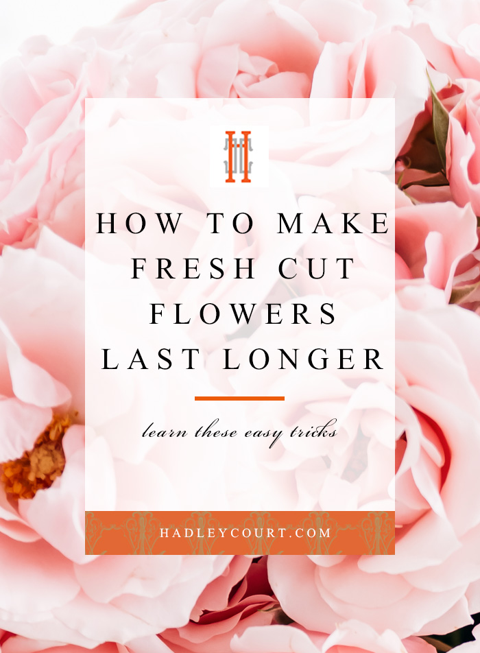 How to make your fresh cut flowers last longer, learn these easy tips and tricks!