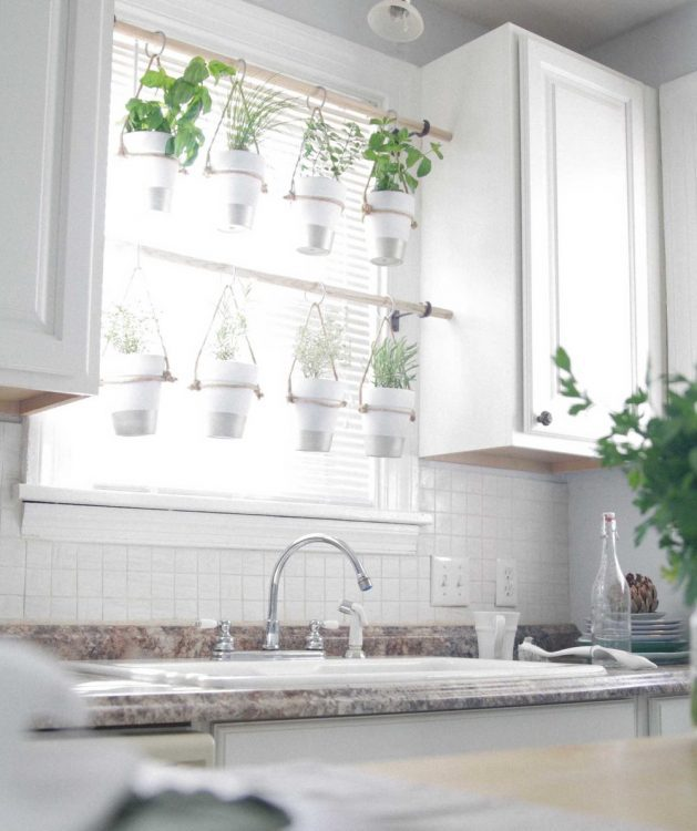indoor hanging herb garden, use your windows for natural light. Click to see the rest of the tips in the post