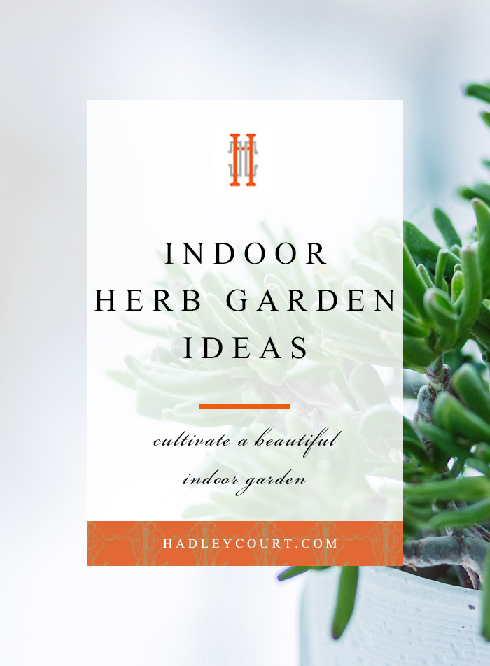 Indoor herb garden ideas, how to create a beautiful garden inside your home!