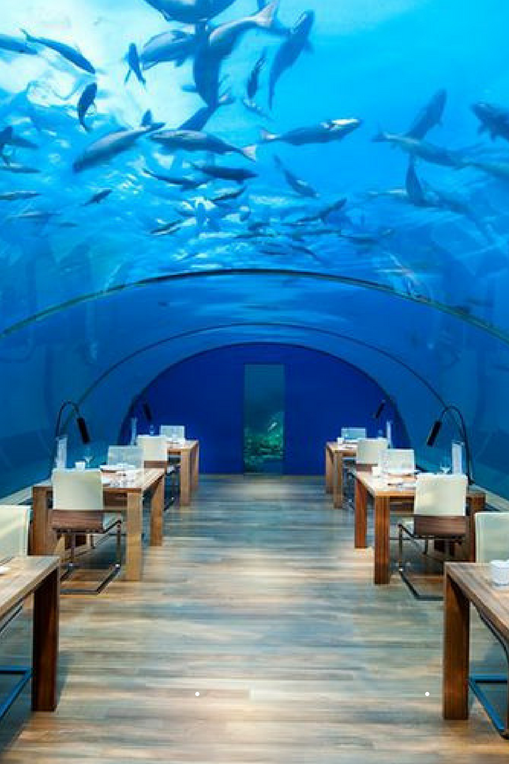 Conrad Maldives underwater resort: Underwater dining