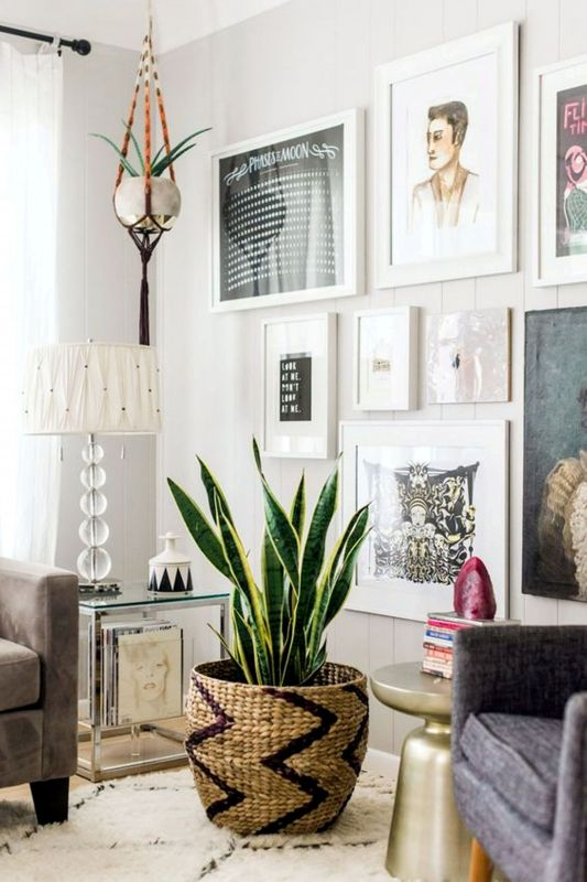 snake plant houseplants that improve indoor air quality